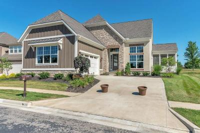 Powell Single Family Home For Sale: 8523 Coldwater Drive