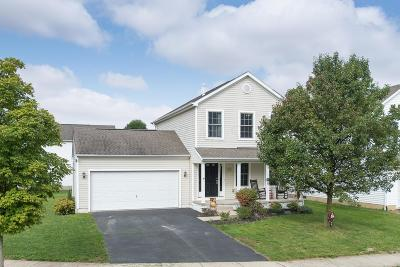 Single Family Home For Sale: 237 Hayfield Drive