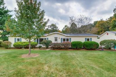 Blacklick Single Family Home For Sale: 8081 Havens Road