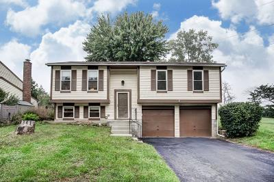 Reynoldsburg Single Family Home Contingent Finance And Inspect: 341 Instone Drive