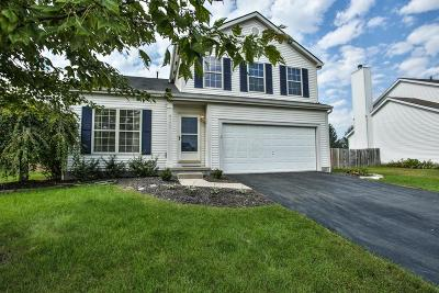 Lewis Center Single Family Home Contingent Finance And Inspect: 8773 Paulden Court
