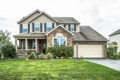 Galena Single Family Home Contingent Finance And Inspect: 6552 Falling Meadows Drive