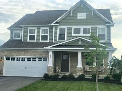 Grove City Single Family Home For Sale: 1875 Southchase Court