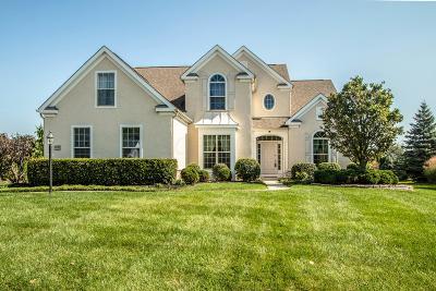 Dublin Single Family Home For Sale: 6842 McDougal Court