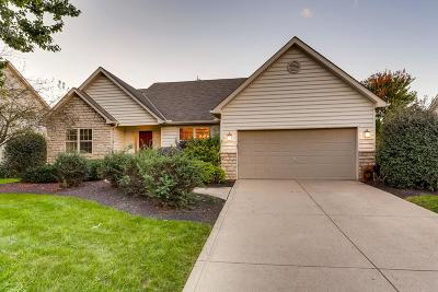 Lewis Center Single Family Home For Sale: 2461 Abbey Knoll Drive