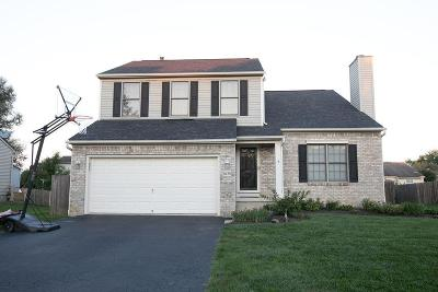 Grove City Single Family Home For Sale: 6430 Fountainview Court
