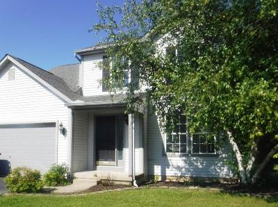Groveport Single Family Home For Sale: 3981 Walnut Crossing Drive