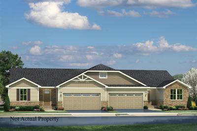 Delaware Single Family Home For Sale: 420 Blaise Lane
