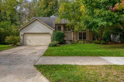 Dublin Single Family Home Contingent Finance And Inspect: 7523 Tullymore Drive