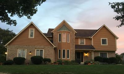 Westerville Single Family Home For Sale: 786 Southbluff Drive