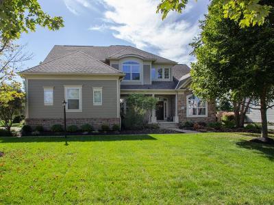 Dublin  Single Family Home For Sale: 4189 Brinsworth Drive