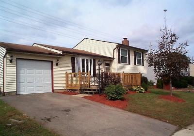 Grove City OH Single Family Home Contingent Finance And Inspect: $128,900
