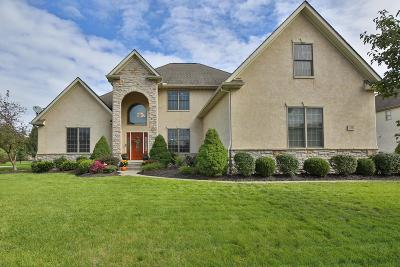 Pickerington Single Family Home For Sale: 13882 Fantasy Way