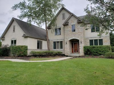 Pickerington Single Family Home For Sale: 13848 Violet Meadows Boulevard