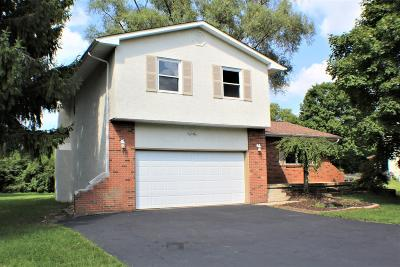 Grove City OH Single Family Home For Sale: $247,400