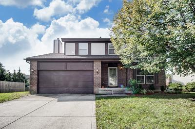 Pickerington Single Family Home For Sale: 7589 Harbour Town Drive