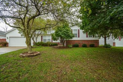 Canal Winchester Single Family Home For Sale: 240 Chesterville Court