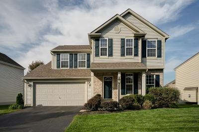 Blacklick Single Family Home For Sale: 389 Rocky Springs Drive
