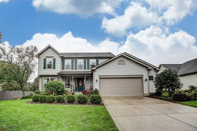 Delaware Single Family Home For Sale: 441 Ablemarle Circle