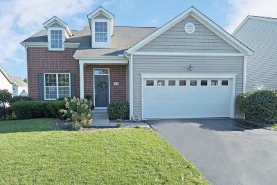 Delaware Single Family Home Contingent Finance And Inspect: 171 Crystal Petal Drive