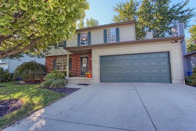 Hilliard Single Family Home For Sale: 5865 Saucony Drive