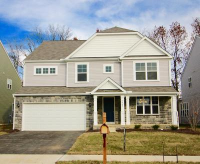 Blacklick Single Family Home For Sale: 7968 Narrow Leaf Drive