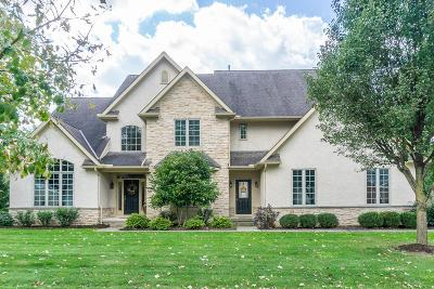 Westerville Single Family Home For Sale: 965 Wake Drive