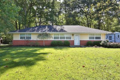 Delaware Single Family Home For Sale: 295 Olentangy View Drive