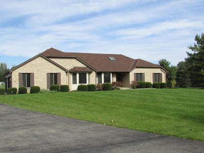 Westerville Single Family Home For Sale: 5631 Freeman Road