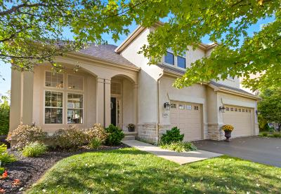 Westerville Single Family Home For Sale: 6450 Dorchester Drive