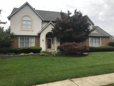 Reynoldsburg Single Family Home For Sale: 1965 Farmsbury Drive