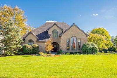 Dublin Single Family Home For Sale: 9014 Macintyre Drive