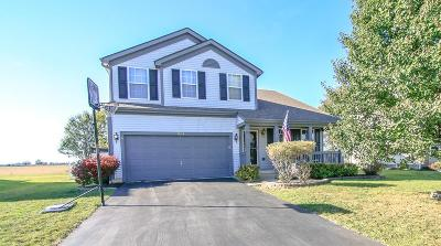 Plain City Single Family Home Contingent Finance And Inspect: 1004 Weather Vane Way