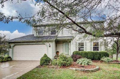 Single Family Home For Sale: 8672 Cadet Drive N