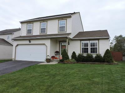 Delaware Single Family Home For Sale: 23 Weltergon Drive
