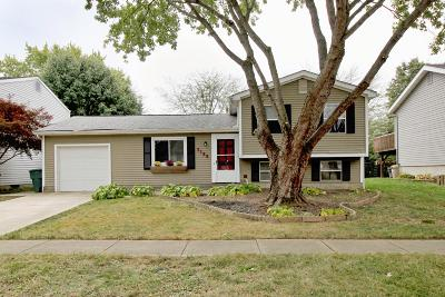 Dublin Single Family Home Contingent Finance And Inspect: 3189 Strathburn Court