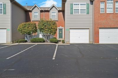 Lewis Center Condo Contingent Finance And Inspect: 703 Mystic Pointe Drive