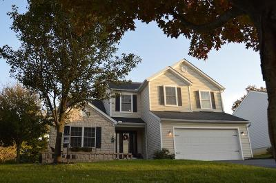 Newark Single Family Home Contingent Finance And Inspect: 2553 Crestview Woods Drive