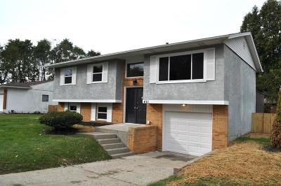 Single Family Home For Sale: 421 Clemson Street