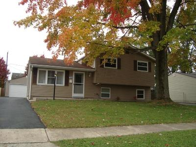 Hilliard Single Family Home Contingent Finance And Inspect: 4457 Paxton Drive S