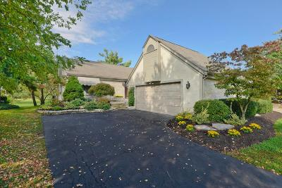 Dublin Single Family Home For Sale: 8689 Craigston Court