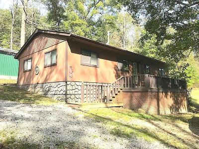 Pike County Single Family Home For Sale: 230 Nance Road
