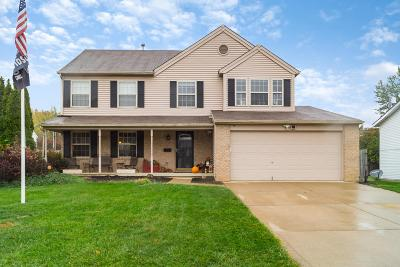 Grove City Single Family Home For Sale: 3216 Kingswood Drive