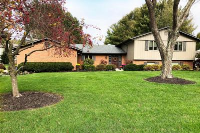Chillicothe OH Single Family Home For Sale: $275,000
