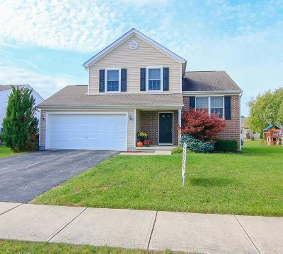 Marysville Single Family Home Contingent Finance And Inspect: 2083 Shetland Street