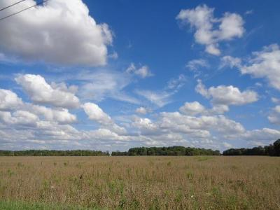 Cardington Residential Lots & Land For Sale: State Route 529 W