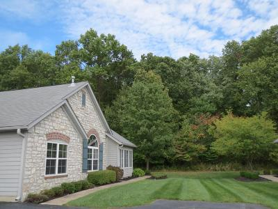 New Albany Condo Contingent Finance And Inspect: 6256 Brickside Drive