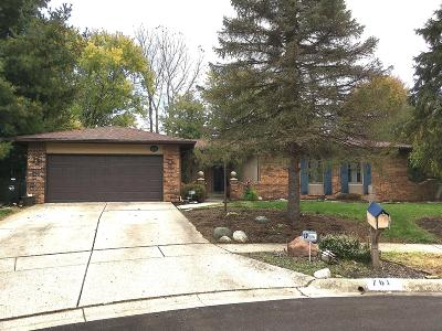 Single Family Home For Sale: 761 Hager Court