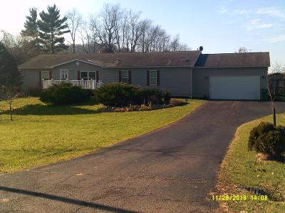 Newark Single Family Home For Sale: 3065 Opossum Hollow Road