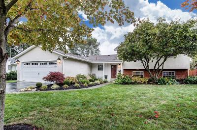 Columbus Single Family Home Contingent Finance And Inspect: 1781 Hove Road